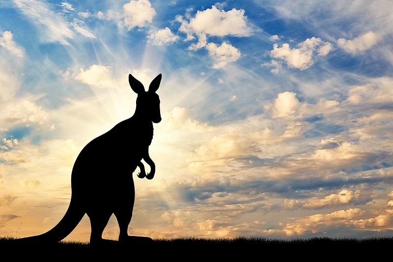 Bluza kangurka - jak ją nosić?