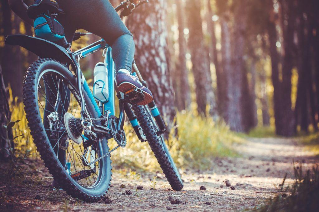 Rowerzysta w lesie