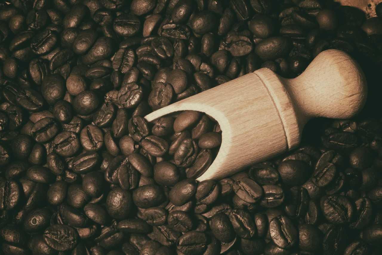 4 ciekawostki o kawie, o których nie miałeś pojęcia